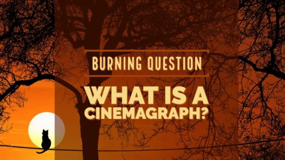 what is cinemagraph
