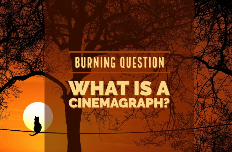 What Are Cinemagraphs & Why Are they Awesome?